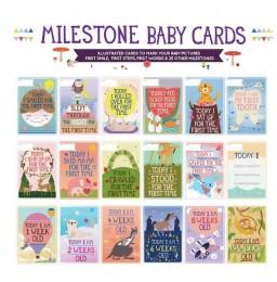http://www.nichebabies.com/3316-thickbox/milestone-baby-cards-.jpg